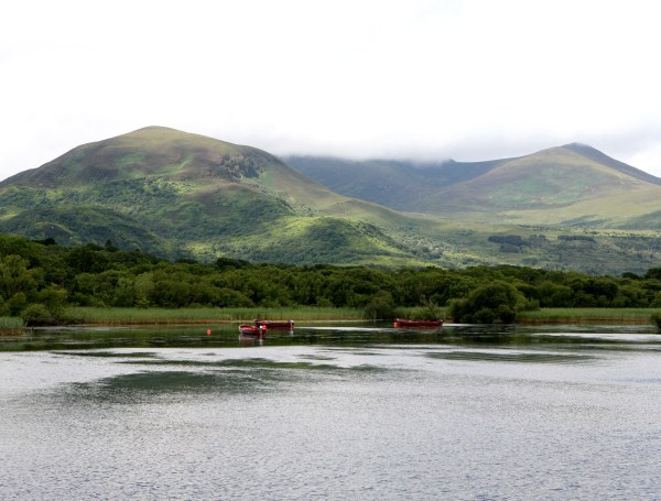 Lough Leane - Picture of Killarney National Park, Killarney ...