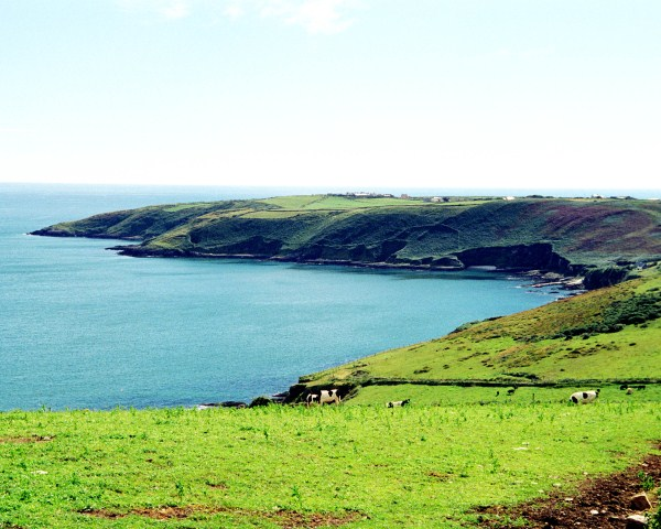Seven Heads, Co. Cork